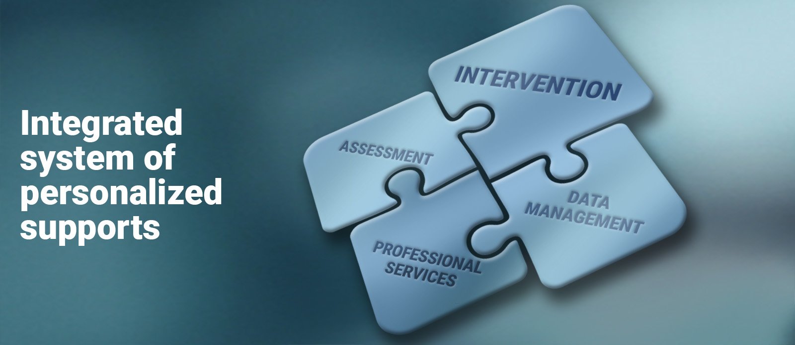 The banner image for the Tools page, which symbolizes the connection between intervention, data management, professional services, and assessment as puzzle pieces fitting together.