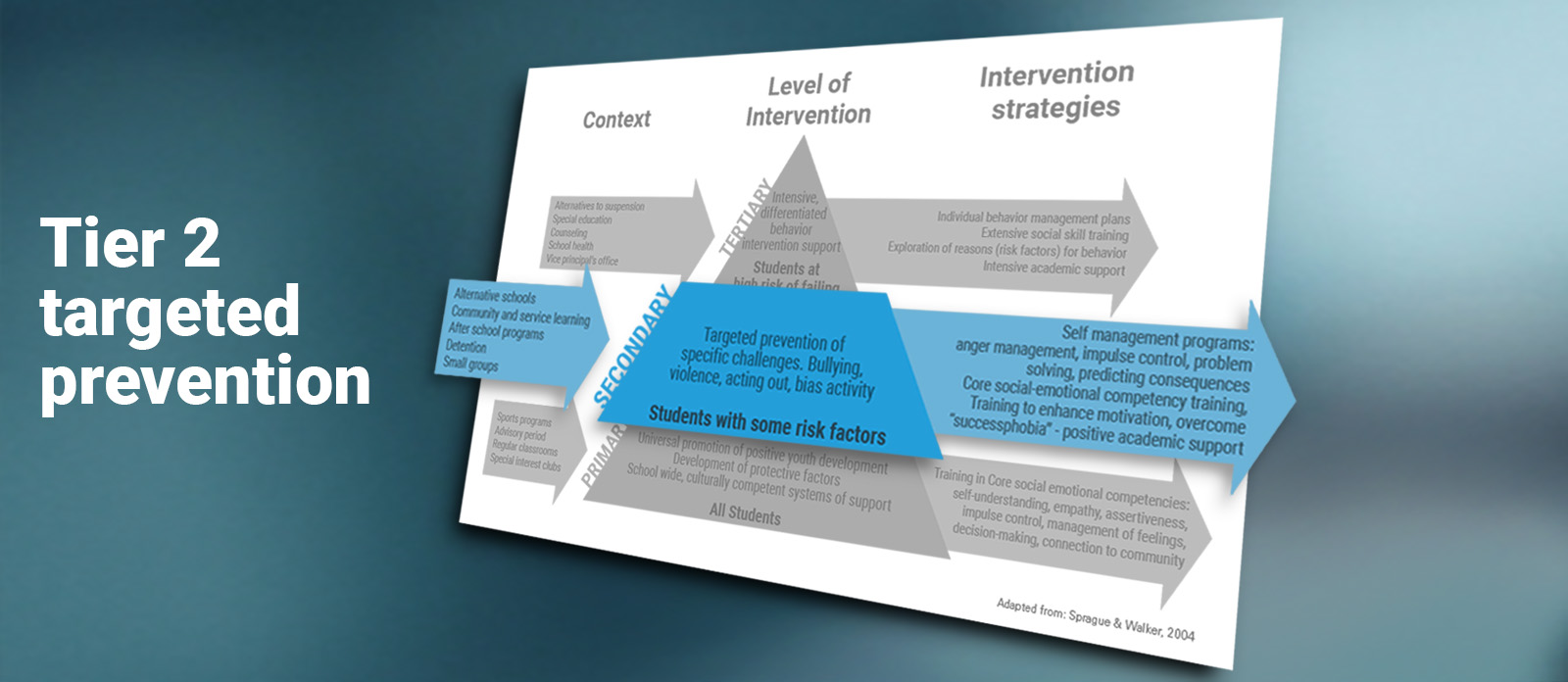 Banner image for the second tier of Ripple Effects' behavioral intervention program: targeted prevention.